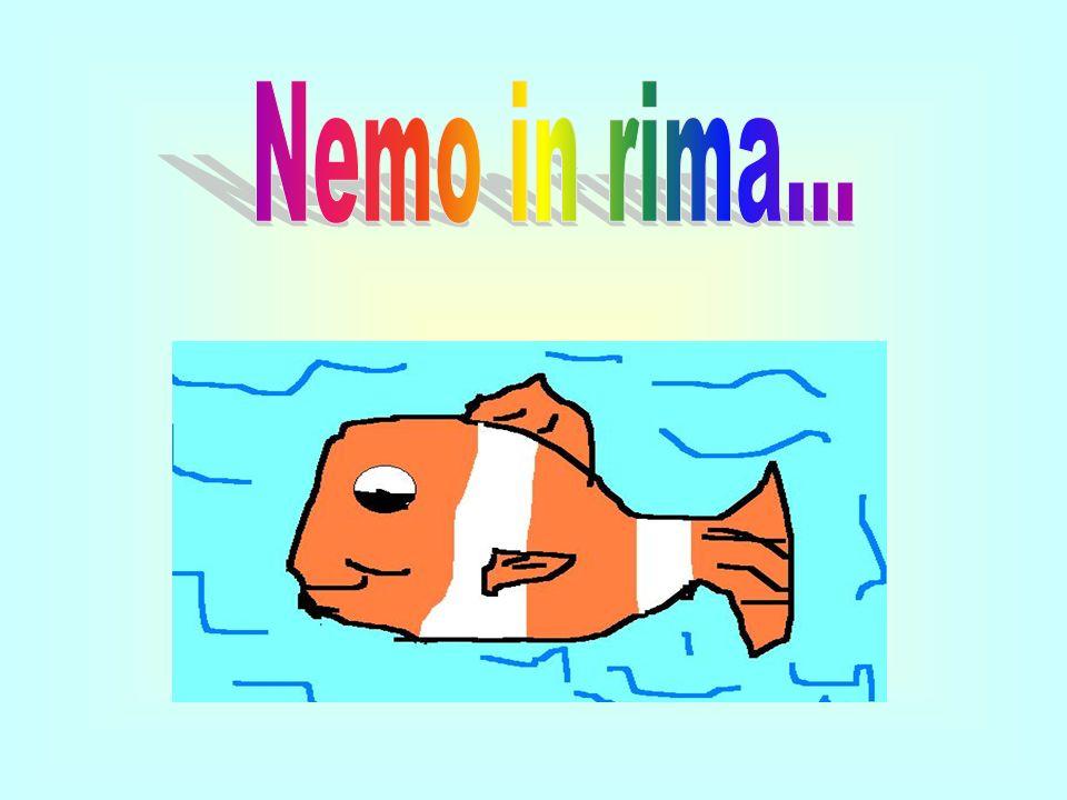 Adesso vi racconteremo le avventure di Nemo, un piccolo pesciolino simpatico e carino.