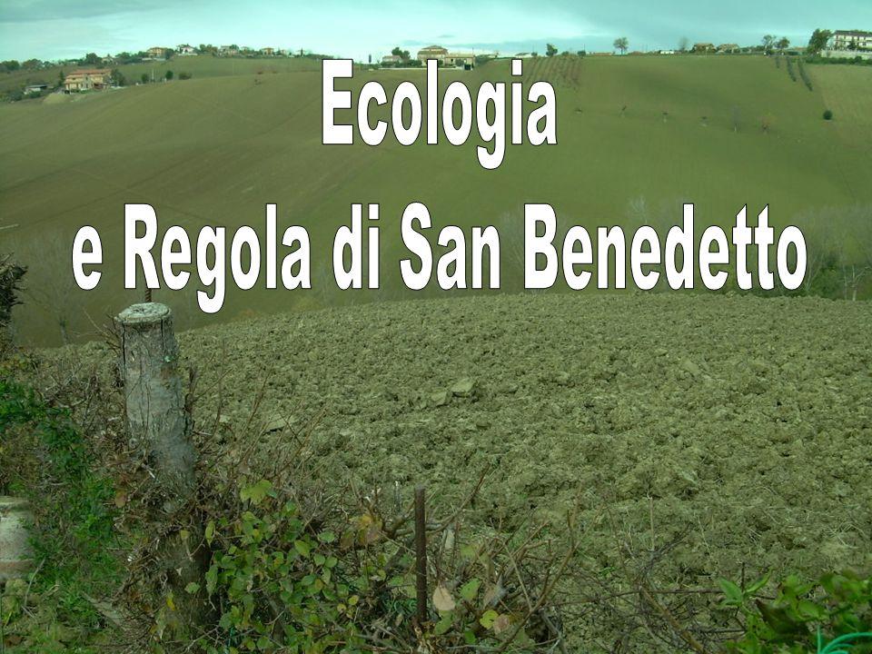 La Regola di San Benedetto risponde ai problemi ecologici perché con le sue indicazioni ascetiche (Vedi Capitolo 7 dellumiltà) conduce il discepolo allesperienza di Dio.