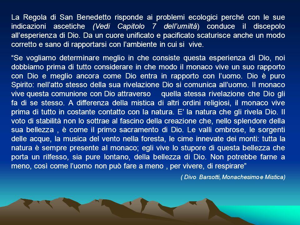La Regola di San Benedetto risponde ai problemi ecologici perché con le sue indicazioni ascetiche (Vedi Capitolo 7 dellumiltà) conduce il discepolo al