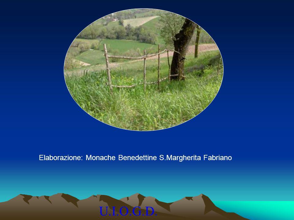 U.I.O.G.D. Elaborazione: Monache Benedettine S.Margherita Fabriano