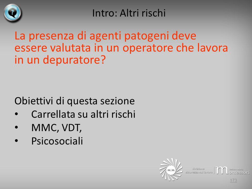 Intro: Altri rischi La presenza di agenti patogeni deve essere valutata in un operatore che lavora in un depuratore.