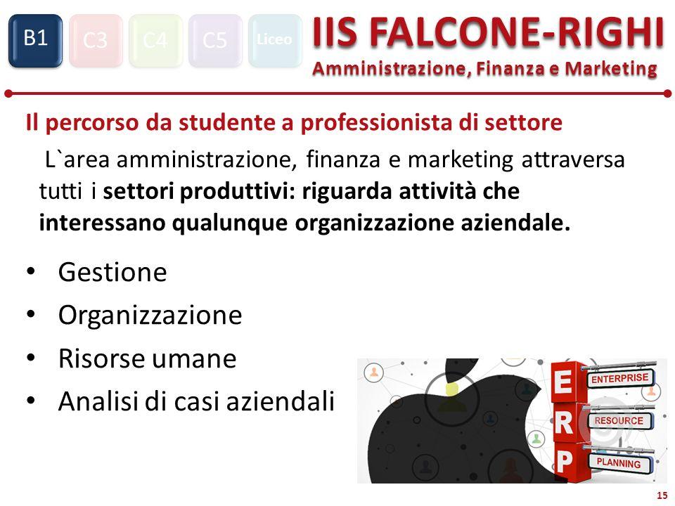 C3C4C5 IIS FALCONE-RIGHI Amministrazione, Finanza e Marketing S1 B1 Liceo 15 Il percorso da studente a professionista di settore L`area amministrazion