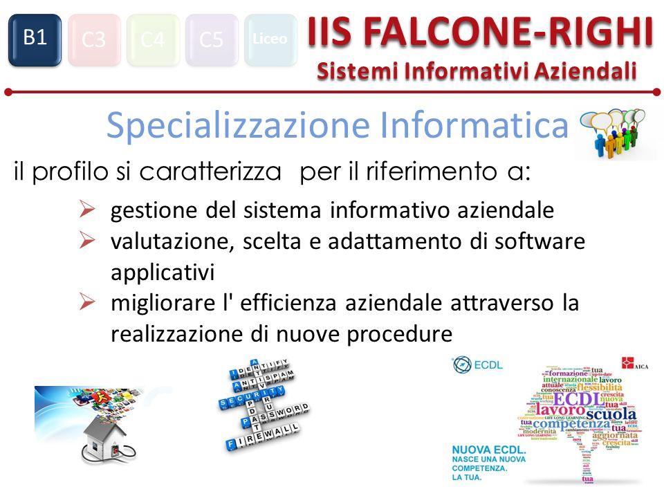 C3C4C5 IIS FALCONE-RIGHI Sistemi Informativi Aziendali S1 B1 Liceo Specializzazione Informatica il profilo si caratterizza per il riferimento a: gesti