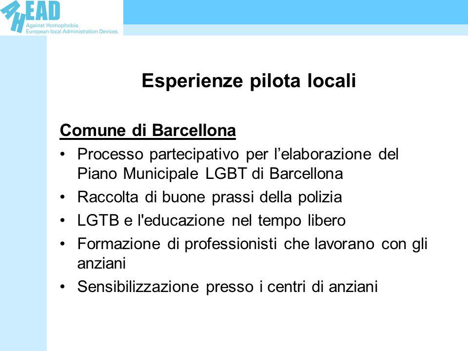 Esperienze pilota locali Comune di Barcellona Processo partecipativo per lelaborazione del Piano Municipale LGBT di Barcellona Raccolta di buone prassi della polizia LGTB e l educazione nel tempo libero Formazione di professionisti che lavorano con gli anziani Sensibilizzazione presso i centri di anziani
