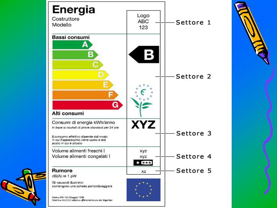 Letichetta può essere suddivisa da 2 a 7 settori a seconda dellelettrodomestico in esame: 1.PRIMO SETTORE: identifica il nome, il logo del costruttore e il modello dellelettrodomestico; 2.SECONDO SETTORE: riporta le classi di efficienza energetica, che sono comprese tra A e G; 3.TERZO SETTORE: viene indicato il consumo di energia espresso in kWh/annuo; 4.SETTORE QUATTRO: vengono forniti dati sulla capacità dellapparecchio; 5.SETTORE CUNQUE: indica la rumorosità dellapparecchio.