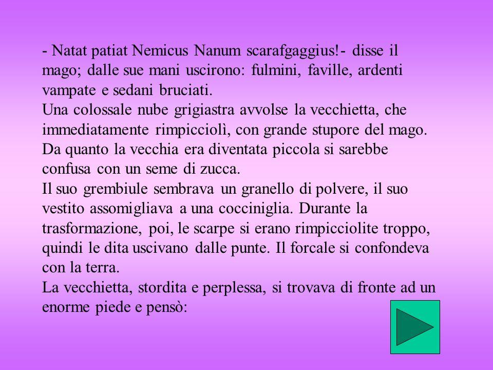 - Natat patiat Nemicus Nanum scarafgaggius!- disse il mago; dalle sue mani uscirono: fulmini, faville, ardenti vampate e sedani bruciati. Una colossal