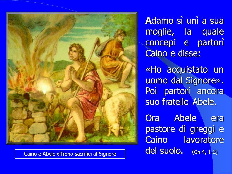 Caino e Abele offrono sacrifici al Signore Adamo Adamo sì unì a sua moglie, la quale concepì e partorì Caino e disse: «Ho acquistato un uomo dal Signo