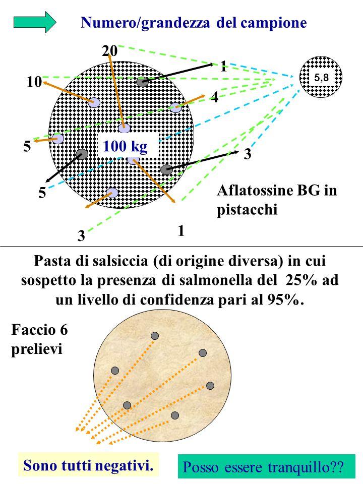 Numero/grandezza del campione 1 3 5 3 10 20 5 1 4 3 Aflatossine BG in pistacchi 100 kg 5,8 Pasta di salsiccia (di origine diversa) in cui sospetto la