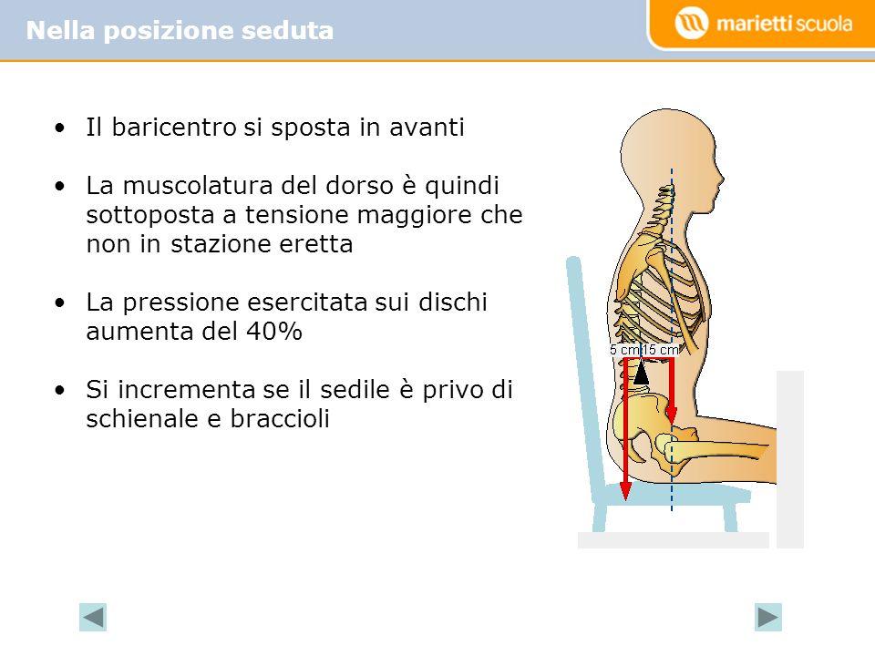 Il baricentro si sposta in avanti La muscolatura del dorso è quindi sottoposta a tensione maggiore che non in stazione eretta La pressione esercitata