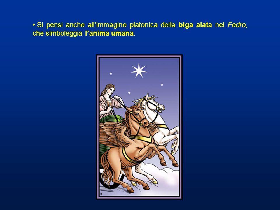 Si pensi anche allimmagine platonica della biga alata nel Fedro, che simboleggia lanima umana.