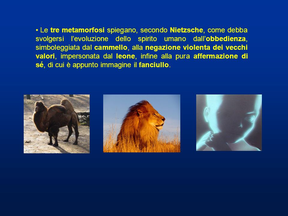 Le tre metamorfosi spiegano, secondo Nietzsche, come debba svolgersi levoluzione dello spirito umano dallobbedienza, simboleggiata dal cammello, alla