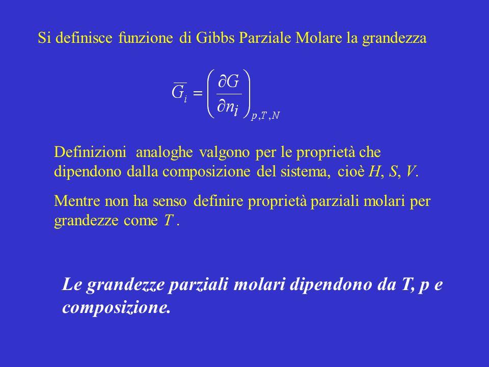 Si definisce funzione di Gibbs Parziale Molare la grandezza Definizioni analoghe valgono per le proprietà che dipendono dalla composizione del sistema