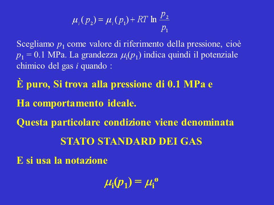 Scegliamo p 1 come valore di riferimento della pressione, cioè p 1 = 0.1 MPa. La grandezza i (p 1 ) indica quindi il potenziale chimico del gas i quan