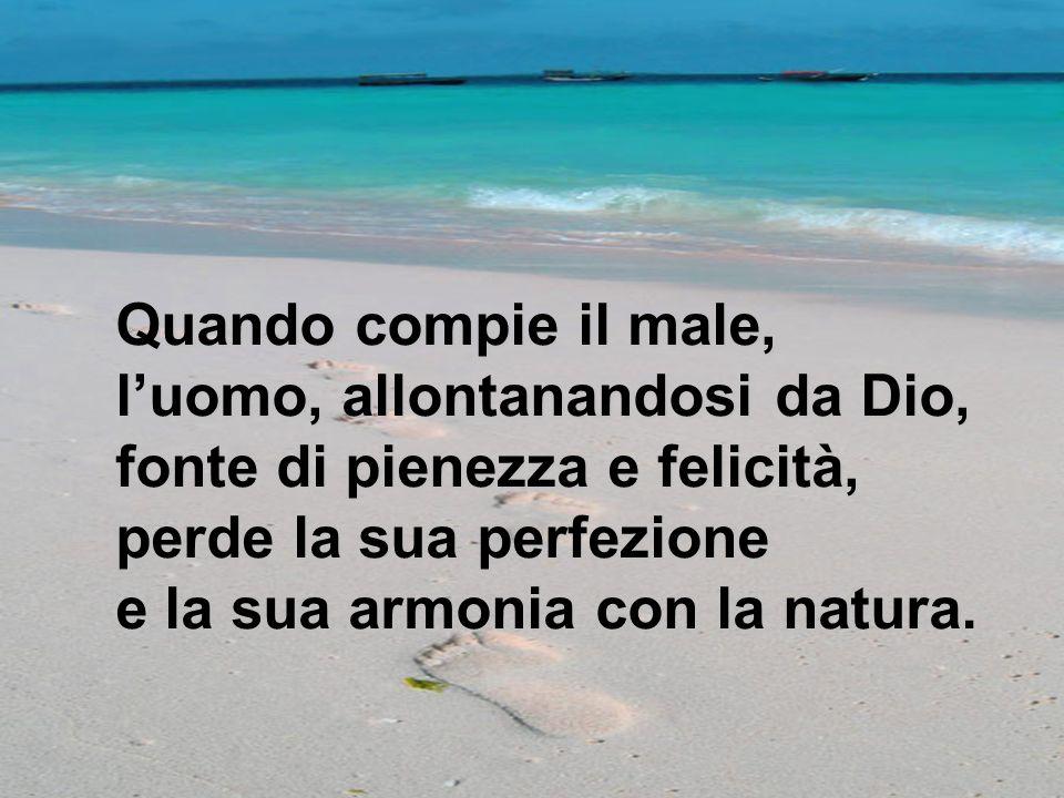 Quando compie il male, luomo, allontanandosi da Dio, fonte di pienezza e felicità, perde la sua perfezione e la sua armonia con la natura.