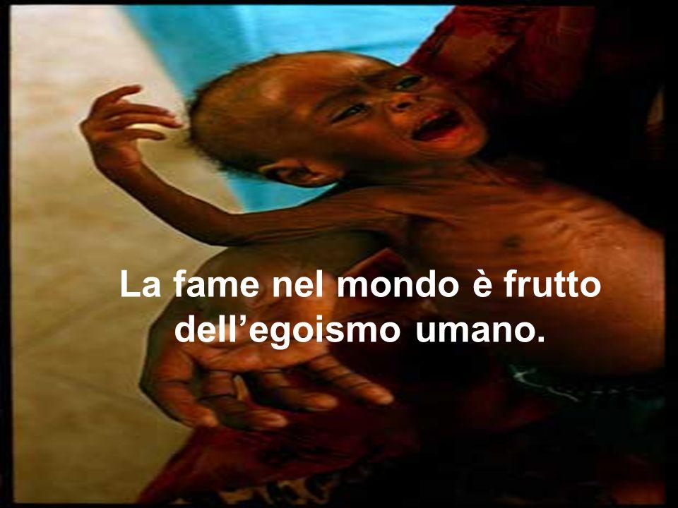 La fame nel mondo è frutto dellegoismo umano.
