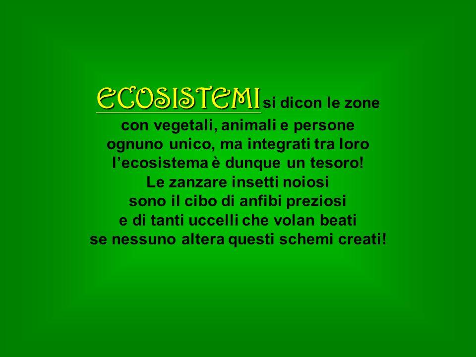 ECOSISTEMI ECOSISTEMI si dicon le zone con vegetali, animali e persone ognuno unico, ma integrati tra loro lecosistema è dunque un tesoro! Le zanzare