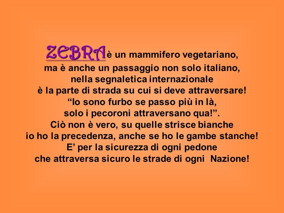ZEBRA ZEBRA è un mammifero vegetariano, ma è anche un passaggio non solo italiano, nella segnaletica internazionale è la parte di strada su cui si dev