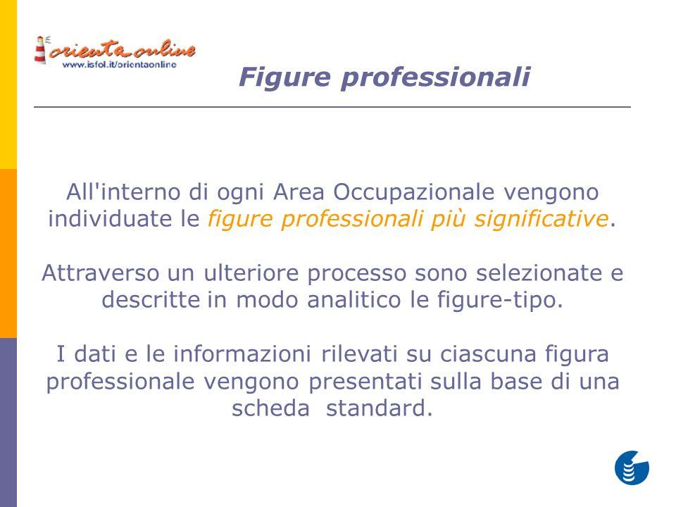 All'interno di ogni Area Occupazionale vengono individuate le figure professionali più significative. Attraverso un ulteriore processo sono selezionat