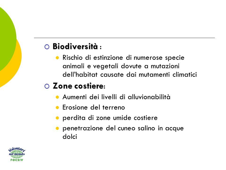 Biodiversità Biodiversità : Rischio di estinzione di numerose specie animali e vegetali dovute a mutazioni dellhabitat causate dai mutamenti climatici Zone costiere Zone costiere: Aumenti dei livelli di alluvionabilità Erosione del terreno perdita di zone umide costiere penetrazione del cuneo salino in acque dolci