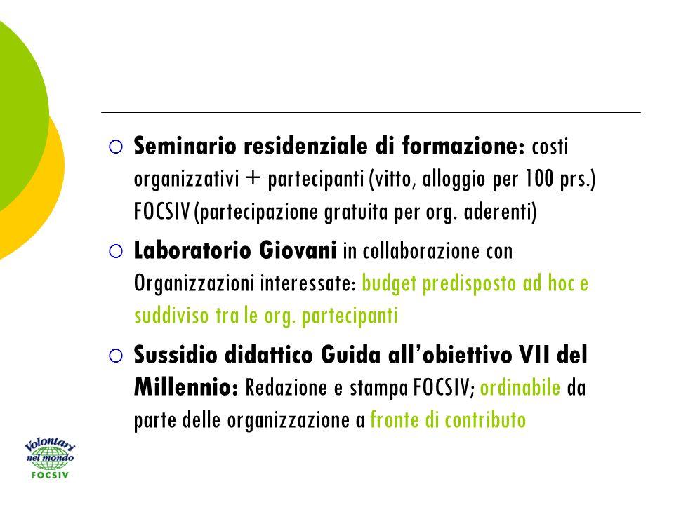 Seminario residenziale di formazione: costi organizzativi + partecipanti (vitto, alloggio per 100 prs.) FOCSIV (partecipazione gratuita per org.