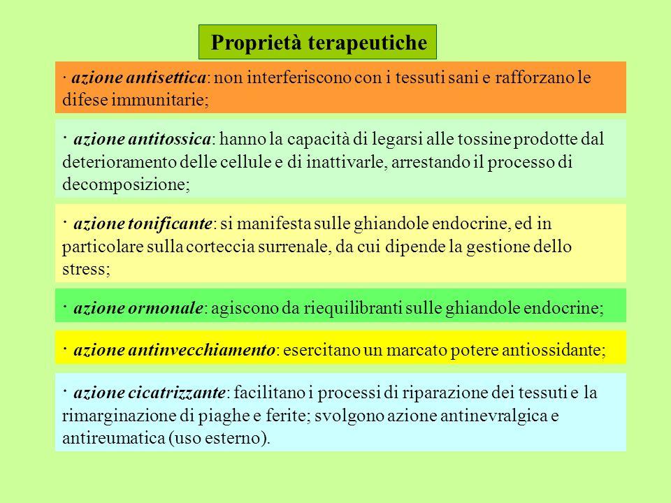 · azione antisettica: non interferiscono con i tessuti sani e rafforzano le difese immunitarie; Proprietà terapeutiche · azione antitossica: hanno la capacità di legarsi alle tossine prodotte dal deterioramento delle cellule e di inattivarle, arrestando il processo di decomposizione; · azione tonificante: si manifesta sulle ghiandole endocrine, ed in particolare sulla corteccia surrenale, da cui dipende la gestione dello stress; · azione ormonale: agiscono da riequilibranti sulle ghiandole endocrine; · azione antinvecchiamento: esercitano un marcato potere antiossidante; · azione cicatrizzante: facilitano i processi di riparazione dei tessuti e la rimarginazione di piaghe e ferite; svolgono azione antinevralgica e antireumatica (uso esterno).