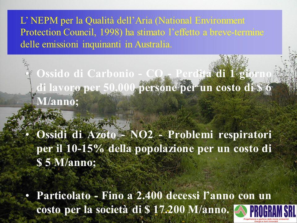 Ossido di Carbonio - CO - Perdita di 1 giorno di lavoro per 50.000 persone per un costo di $ 6 M/anno; Ossidi di Azoto - NO2 - Problemi respiratori pe