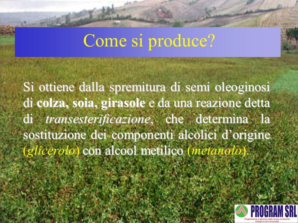 Come si produce? Si ottiene dalla spremitura di semi oleoginosi di colza, soia, girasole e da una reazione detta di transesterificazione, che determin