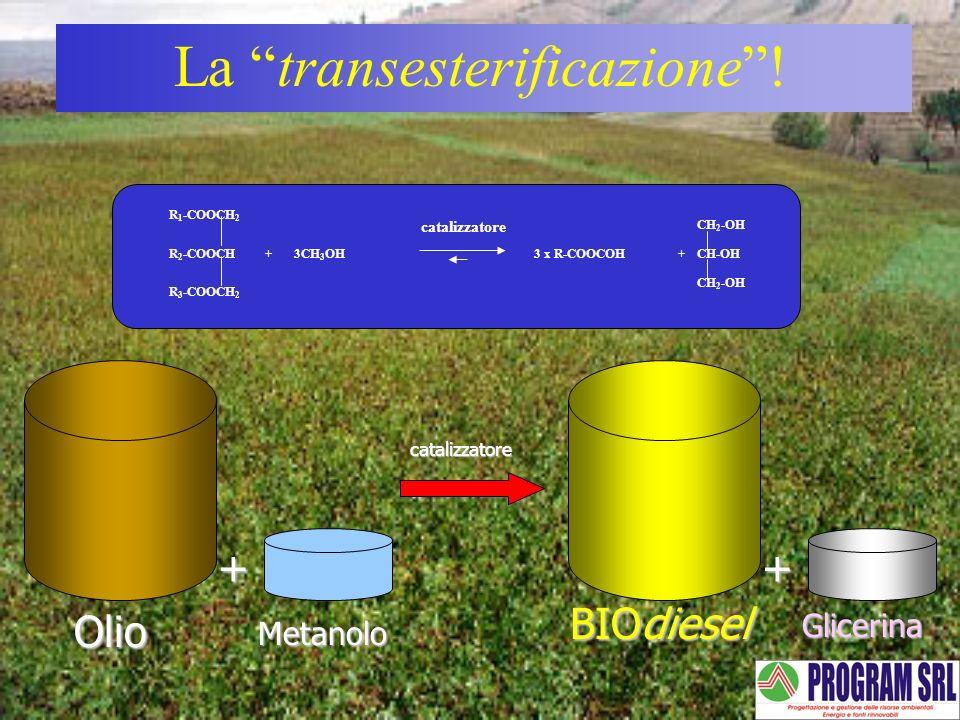 La transesterificazione!catalizzatore Olio + Metanolo BIOdiesel + Glicerina R 3 -COOCH 2 R 2 -COOCH R 1 -COOCH 2 3CH 3 OH CH 2 -OH ++3 x R-COOCOHCH-OH