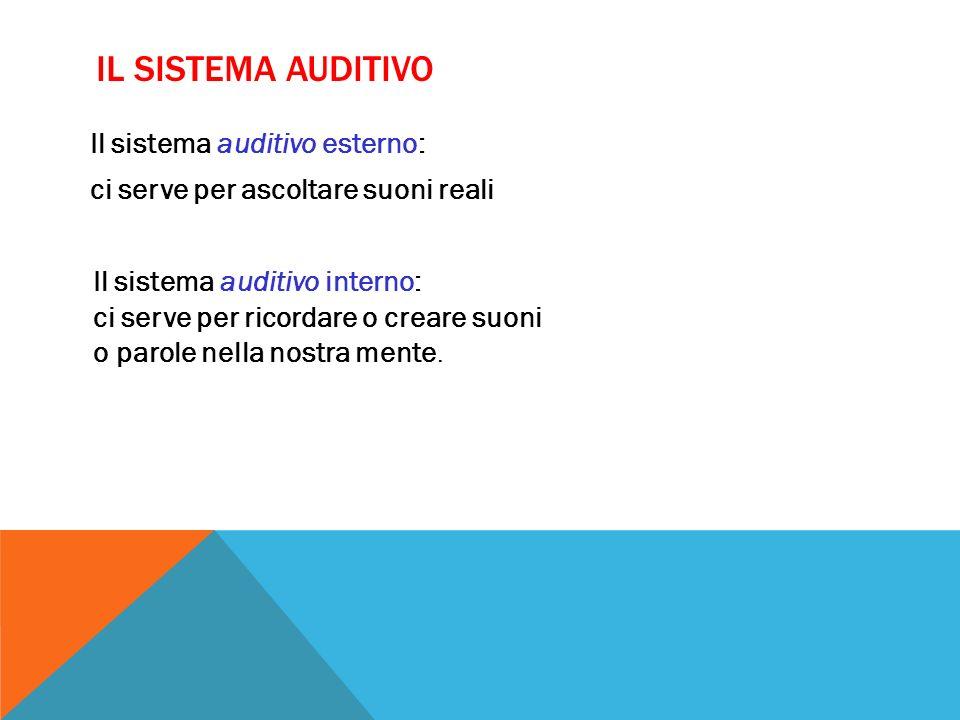 Il sistema auditivo esterno: ci serve per ascoltare suoni reali IL SISTEMA AUDITIVO Il sistema auditivo interno: ci serve per ricordare o creare suoni