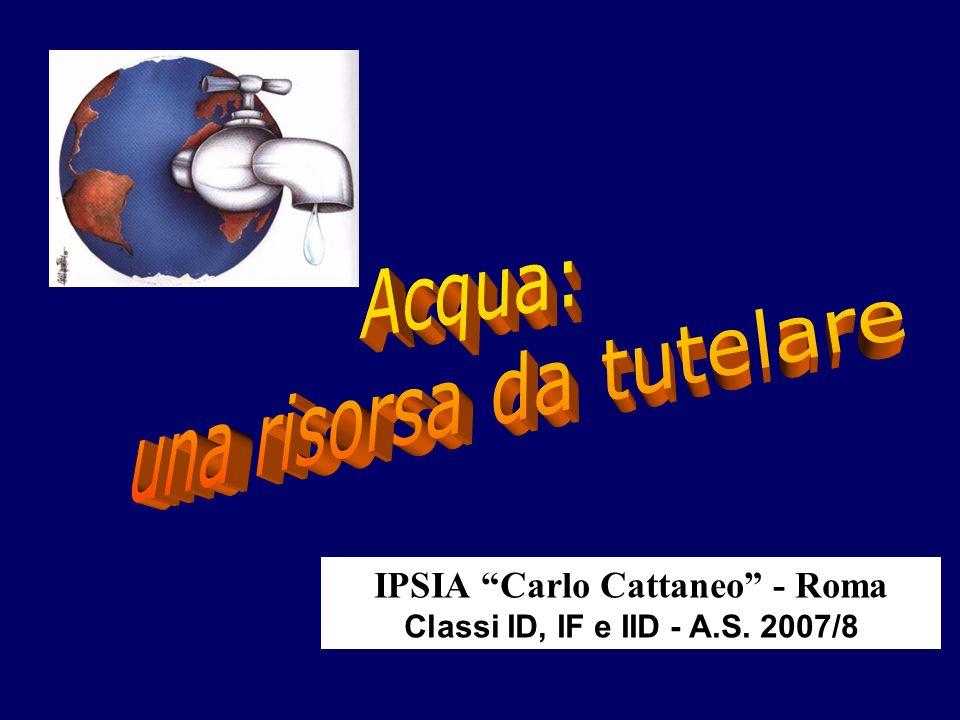 IPSIA Carlo Cattaneo - Roma Classi ID, IF e IID - A.S. 2007/8
