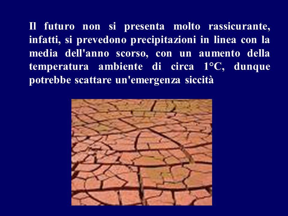 Il futuro non si presenta molto rassicurante, infatti, si prevedono precipitazioni in linea con la media dell'anno scorso, con un aumento della temper