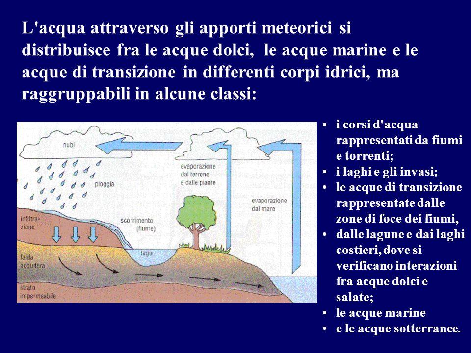 i corsi d'acqua rappresentati da fiumi e torrenti; i laghi e gli invasi; le acque di transizione rappresentate dalle zone di foce dei fiumi, dalle lag