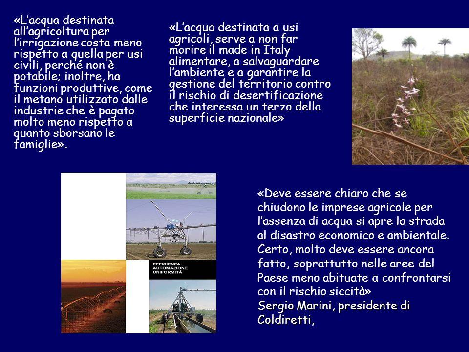 «Lacqua destinata allagricoltura per lirrigazione costa meno rispetto a quella per usi civili, perché non è potabile; inoltre, ha funzioni produttive,
