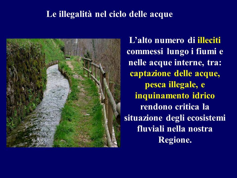 Lalto numero di illeciti commessi lungo i fiumi e nelle acque interne, tra: captazione delle acque, pesca illegale, e inquinamento idrico rendono crit