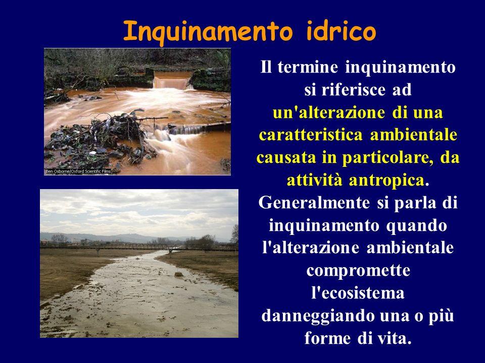 Inquinamento idrico Il termine inquinamento si riferisce ad un'alterazione di una caratteristica ambientale causata in particolare, da attività antrop