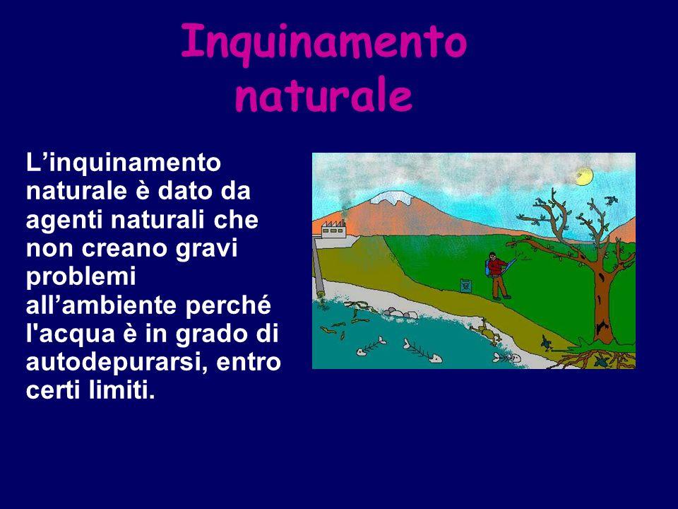 Inquinamento naturale Linquinamento naturale è dato da agenti naturali che non creano gravi problemi allambiente perché l'acqua è in grado di autodepu