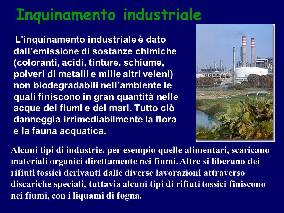 L'inquinamento industriale è dato dallemissione di sostanze chimiche (coloranti, acidi, tinture, schiume, polveri di metalli e mille altri veleni) non