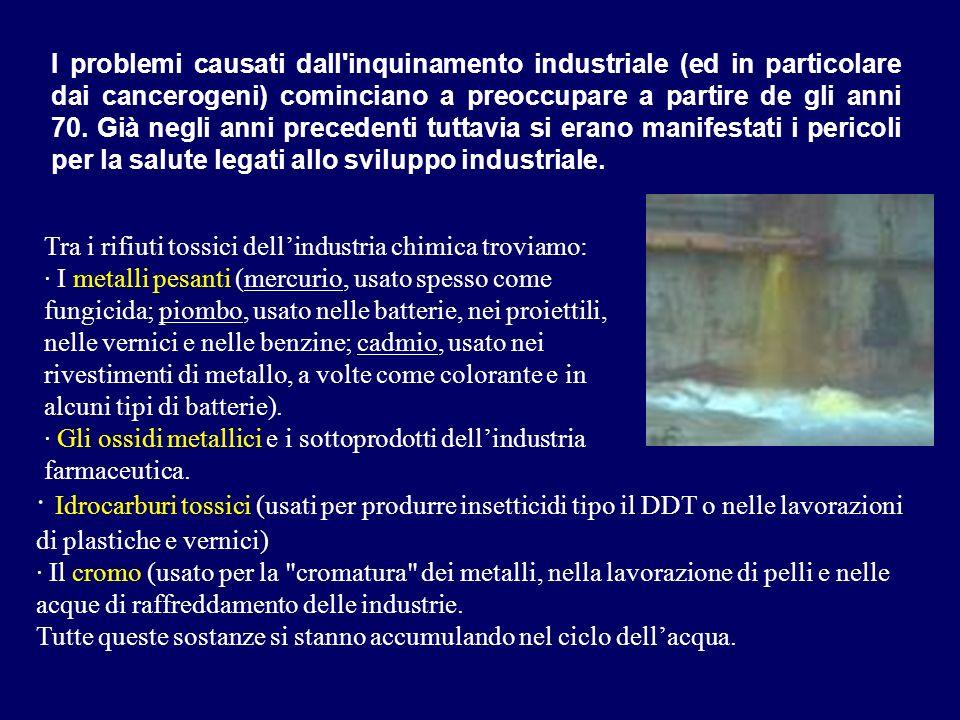 Tra i rifiuti tossici dellindustria chimica troviamo: · I metalli pesanti (mercurio, usato spesso come fungicida; piombo, usato nelle batterie, nei pr