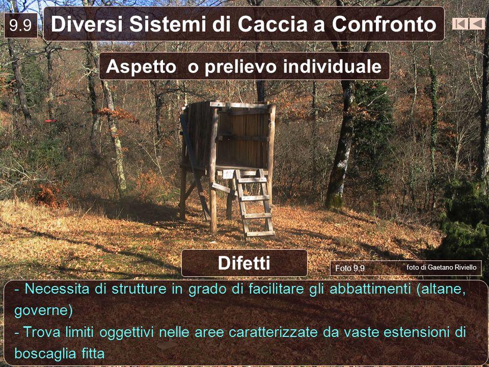 9.9 Diversi Sistemi di Caccia a Confronto Aspetto o prelievo individuale - Necessita di strutture in grado di facilitare gli abbattimenti (altane, gov
