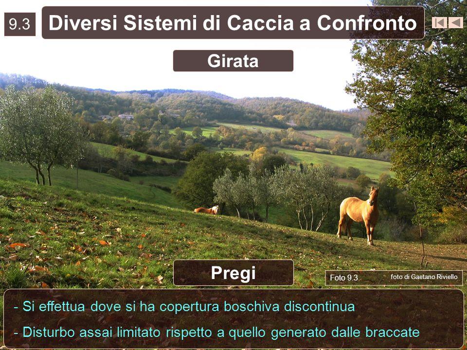 9.3 Diversi Sistemi di Caccia a Confronto - Si effettua dove si ha copertura boschiva discontinua - Disturbo assai limitato rispetto a quello generato