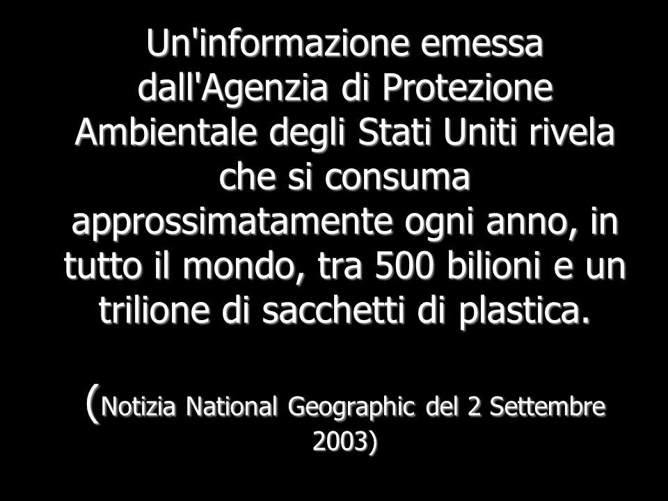 Un informazione emessa dall Agenzia di Protezione Ambientale degli Stati Uniti rivela che si consuma approssimatamente ogni anno, in tutto il mondo, tra 500 bilioni e un trilione di sacchetti di plastica.