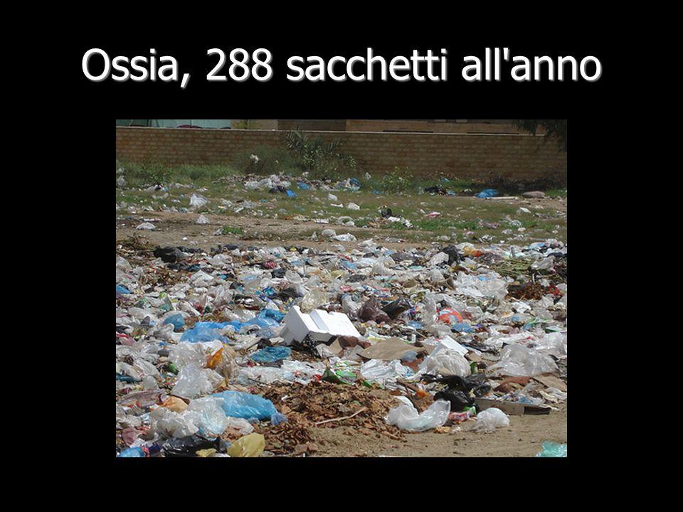 Ossia, 288 sacchetti all anno