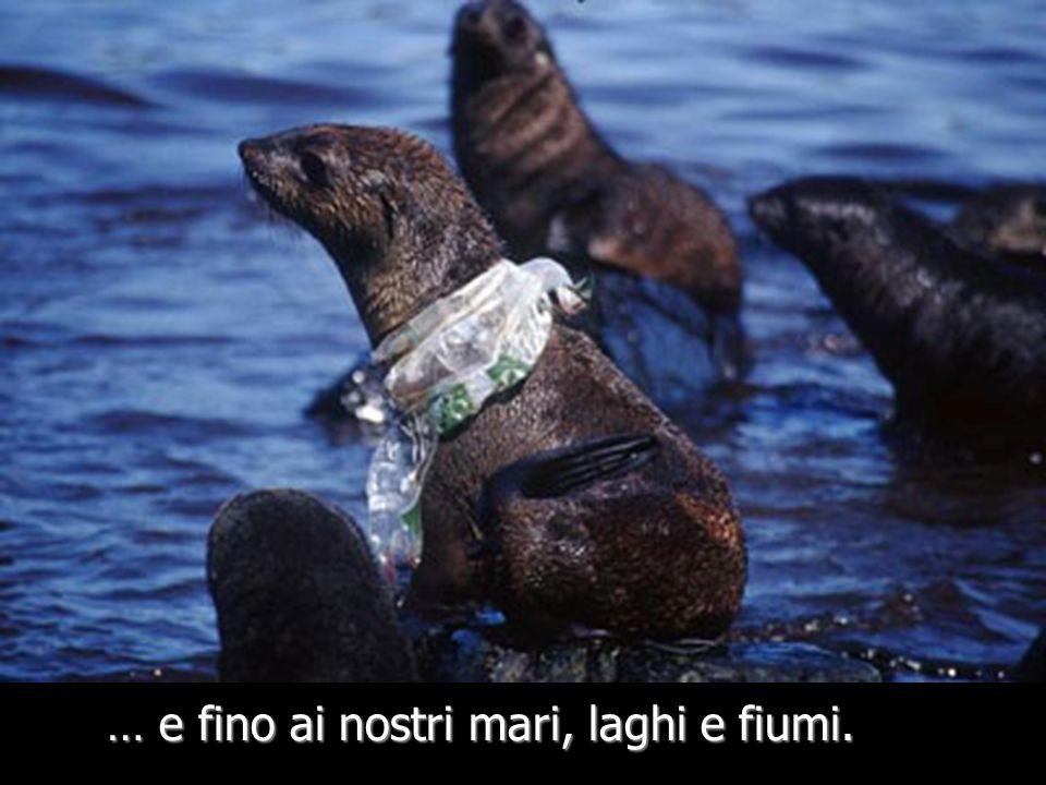 Muoiono dopo aver ingerito i sacchetti di plastica che scambiano per cibo - Riporto WWF 2005