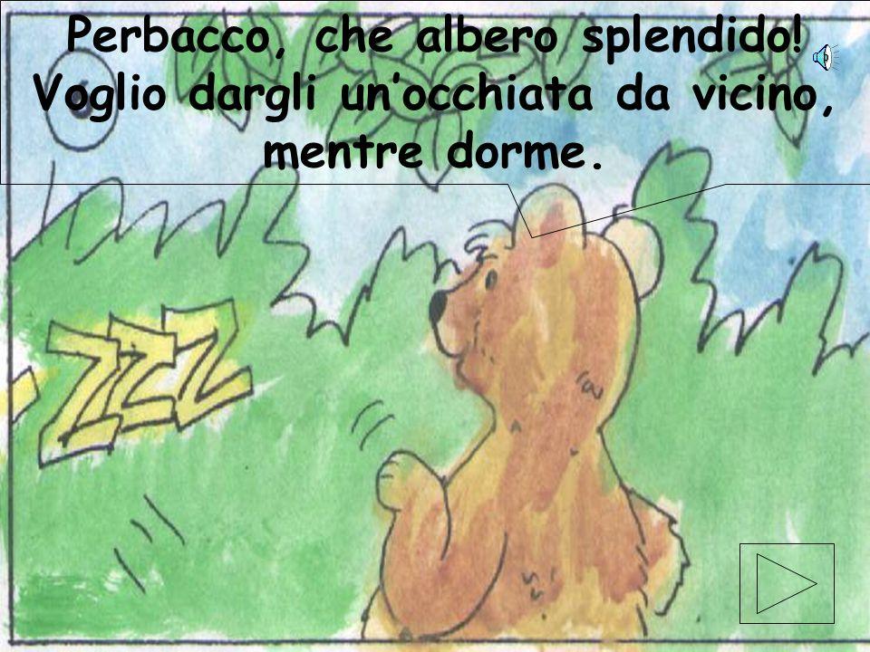elaborazione elettronica di Gabriele Magistrelli ©settembre 2001 16 Ma poco lontano, un orsacchiotto si era messo a guardarlo con aria curiosa.