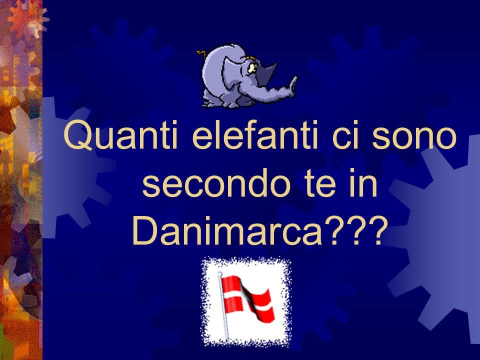 Quanti elefanti ci sono secondo te in Danimarca???