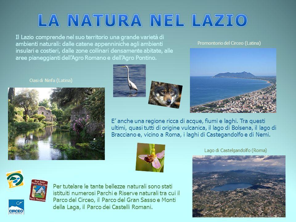 E anche una regione ricca di acque, fiumi e laghi. Tra questi ultimi, quasi tutti di origine vulcanica, il lago di Bolsena, il lago di Bracciano e, vi