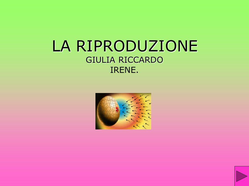LA RIPRODUZIONE GIULIA RICCARDO LA RIPRODUZIONE GIULIA RICCARDO IRENE.