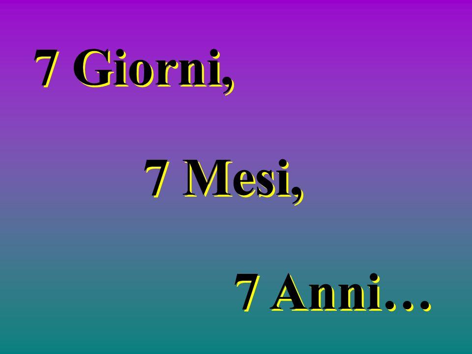 7 Giorni, 7 Mesi, 7 Anni…