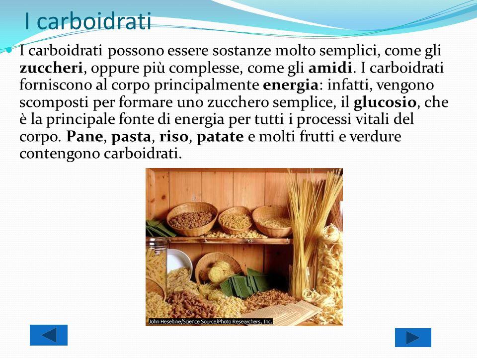 I carboidrati I carboidrati possono essere sostanze molto semplici, come gli zuccheri, oppure più complesse, come gli amidi. I carboidrati forniscono