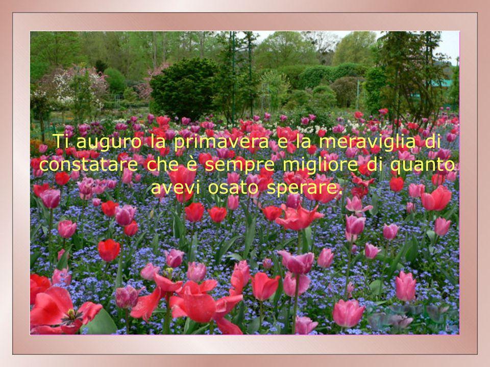 Ti auguro la primavera e la meraviglia di constatare che è sempre migliore di quanto avevi osato sperare.